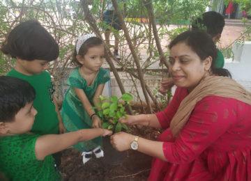 Kids_Plantation_2